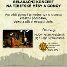 Relaksujący koncert gongów i mis tybetańskich
